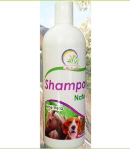 Shampoo-Natural-Veterinario-con-aloe-vera-medellin